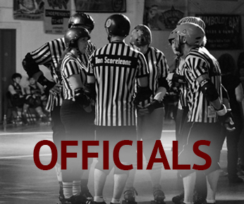 icon_officials