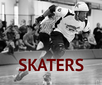icon_skaters